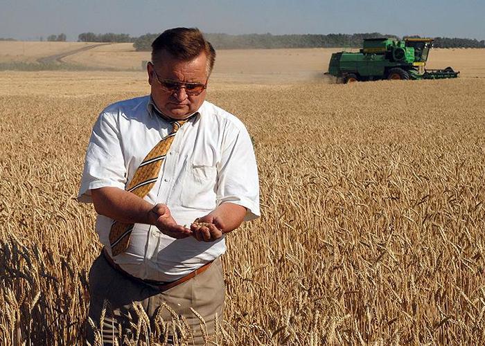 Урожай горит экспортеры давят на производителей зерна