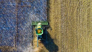 5 способов использования дрона на ферме
