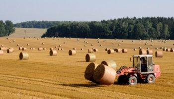 Для аграриев Удмуртии заработало «Единое окно субсидий»