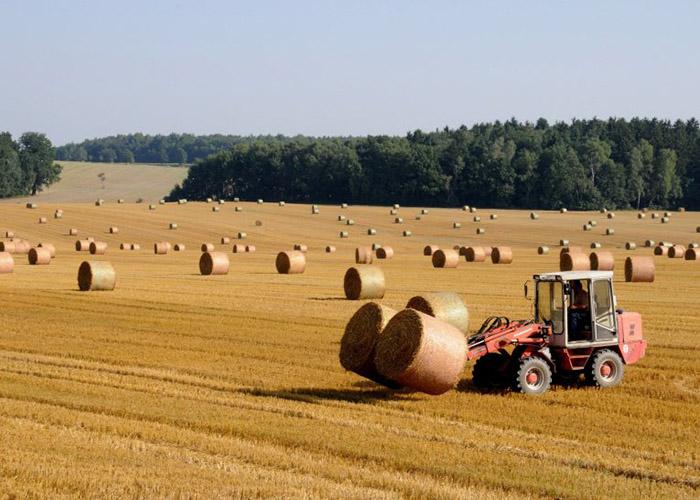 Для аграриев Удмуртии заработало Единое окно субсидий