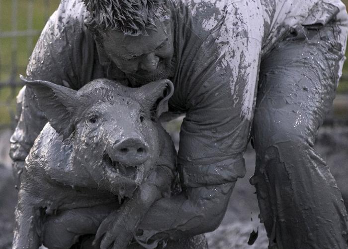 Photo of Как прошел свинский фестиваль в Квебеке – Канада