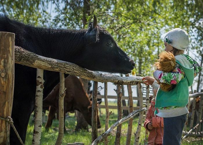 Краудфандинг в сельском хозяйстве возможен-min
