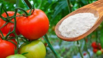 Лечит, удобряет, борется с вредителями – пищевая сода в саду и огороде