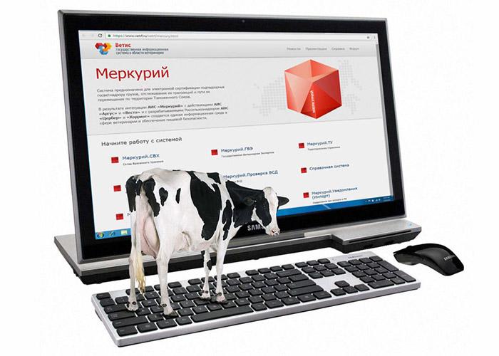 Оформление электронных документов на молочную продукцию в ФГИС «Меркурий»