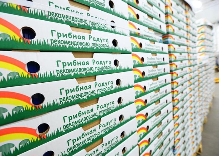 Грибная радуга вложила 2_6 млрд рублей в расширение производства грибов