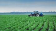 «Заинский сахар» рассчитывает на выручку в 5 млрд рублей в новом сезоне