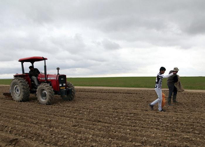 Ирак надеется наукрепление сотрудничества сРоссией всельском хозяйстве