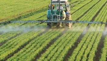 Кубанских аграриев законодательно заставят вносить органические удобрения