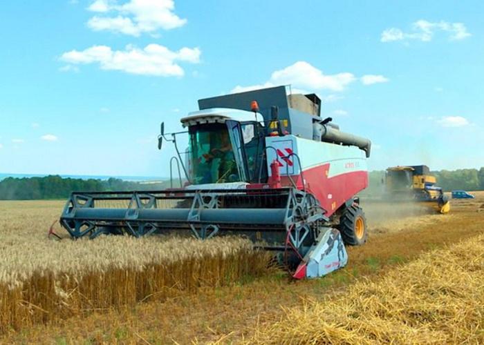 Минсельхоз: вРоссии намолочено более 100млнтонн зерна