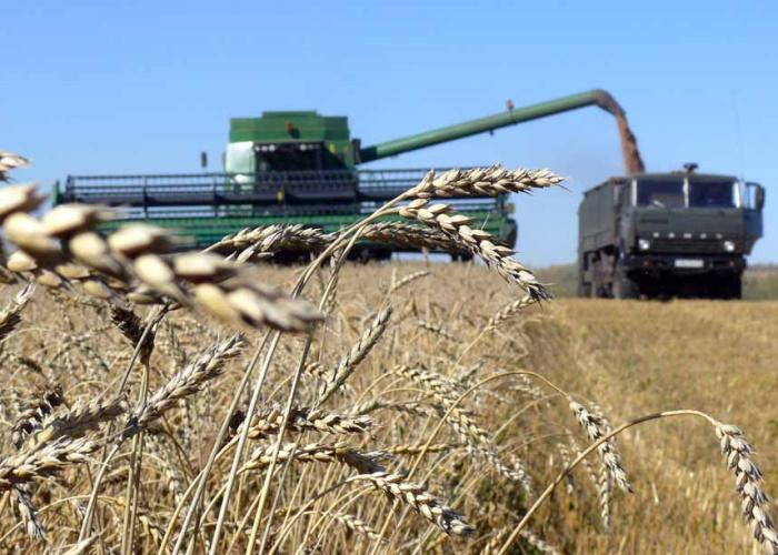На Среднем Урале похвалили хозяйства региона за уборочную кампанию