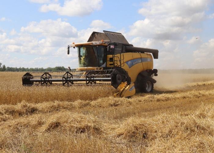 Объем производства сельхозпродукции в регионах СКФО вырос на 2,4% в I полугодии