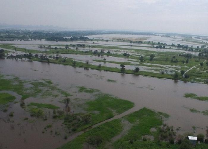 Потери аграриев из-запаводков наДальнем Востоке оценили в5млрд рублей