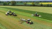 Повышение сырой золы в силосе на 1% снижает надои на 100 килограммов с гектара