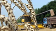 В Башкирии планируют увеличить экспортный потенциал АПК до $230 млн