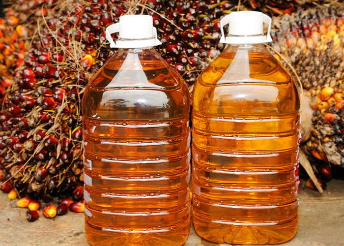 В Госдуме назвали пищевым терроризмом использование пальмового масла в продуктах питания