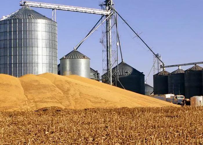 20-миллиардный проект по глубокой переработке пшеницы в Пензенской области ищет китайских инвесторов
