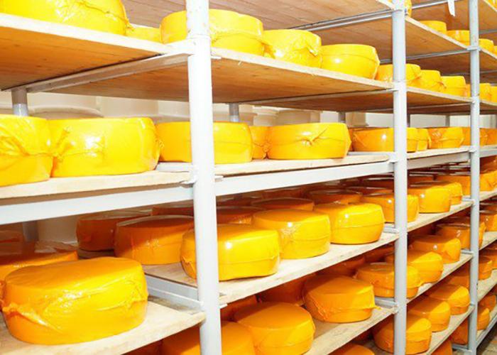 В Ярославской области будет создан сырный кластер