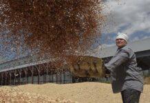 Орловское зерно отправят эмиру