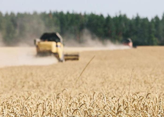 В Одессе депутаты требуют от властей Украины не разрешать продажу земель
