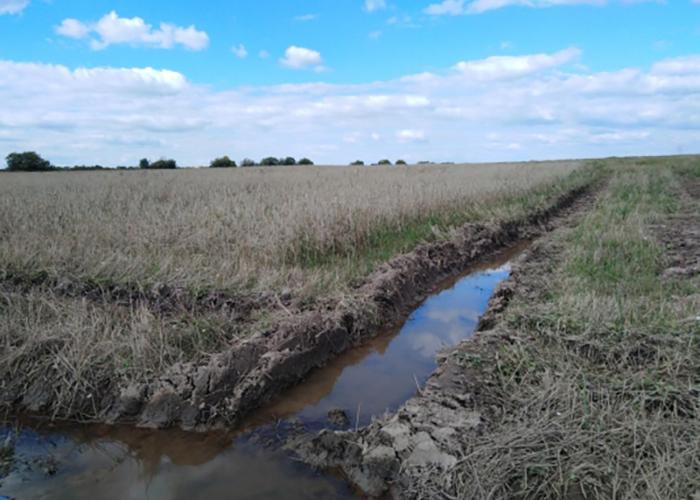 Введенный из-за переувлажнения почвы режим ЧС сняли в Удмуртии