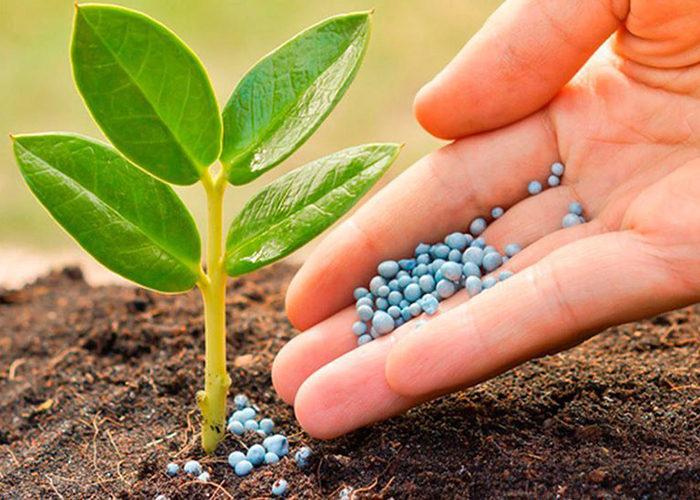 Для минудобрений разработают экологический стандарт