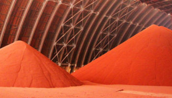 Индия может стать крупным экспортёром калийных удобрений