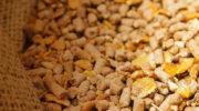 Инвестиции в строительство в Приморье двух заводов по производству витаминов и кормовых добавок составят 3,9 млрд рублей
