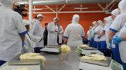 Молочный завод «Тамбовский» в Адыгее начнет выпуск сыров моцарелла и рикотта