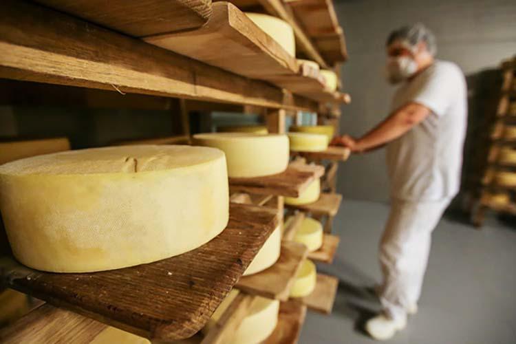 Рейтинг ТОП-20 регионов по объемам производства сыров и сырных продуктов