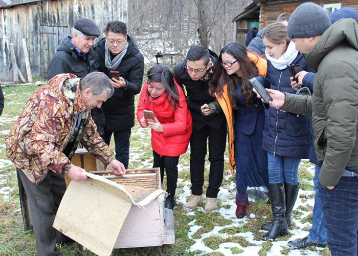 В Башкортостане появится промышленная пасека