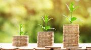 В третьем квартале наибольший вклад в динамику экономики внесло сельское хозяйство благодаря увеличению урожая