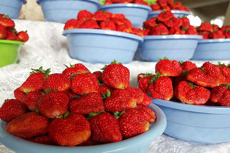 Эксперты назвали самые загрязненные пестицидами фрукты и овощи