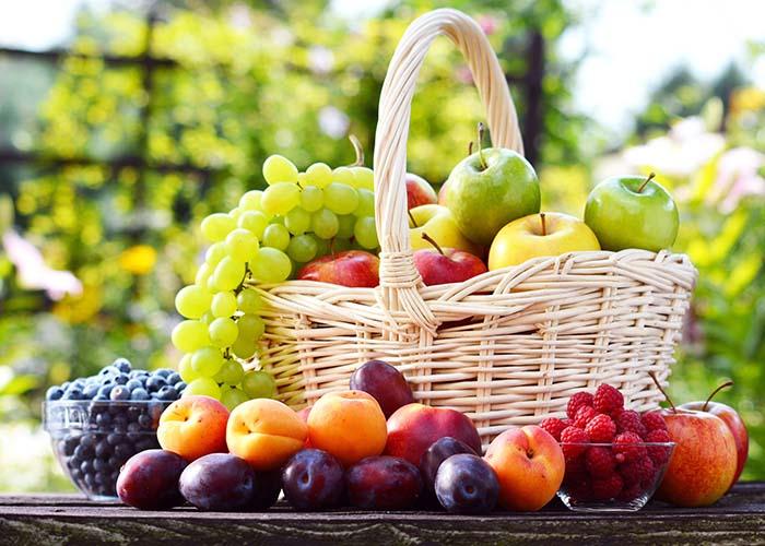 Фруктово-ягодный конвейер на шести сотках