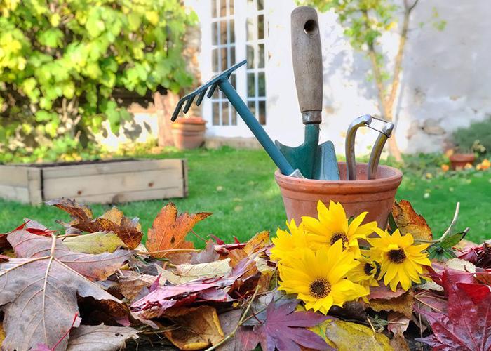 Готовь сани летом а дачу осенью