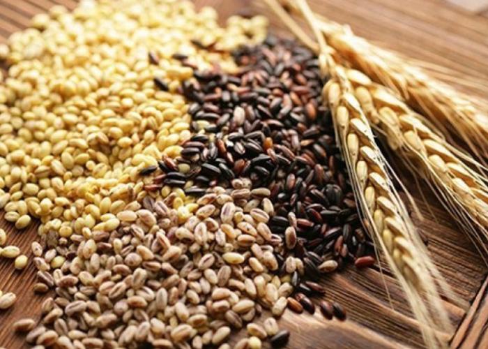 Информационная платформа АгроСемЭксперт позволяет аграриям Татарстана оперативно находить необходимые для посева сорта семян