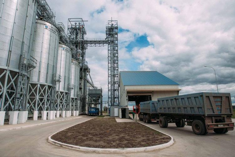 Минсельхоз намерен ввести карантинные сертификаты при перевозках зерна внутри страны