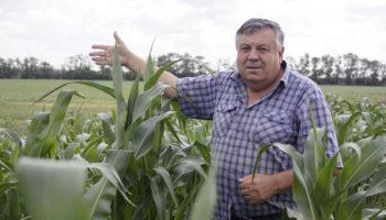Минсельхоз усовершенствует инструменты грантовой поддержки семейных ферм