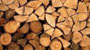 В России выросли цены на дрова — Росстат