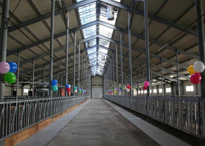 В Удмуртии открылась новая роботизированная молочная ферма