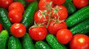 Правительство РФ планирует запретить госзакупки импортных помидоров и огурцов