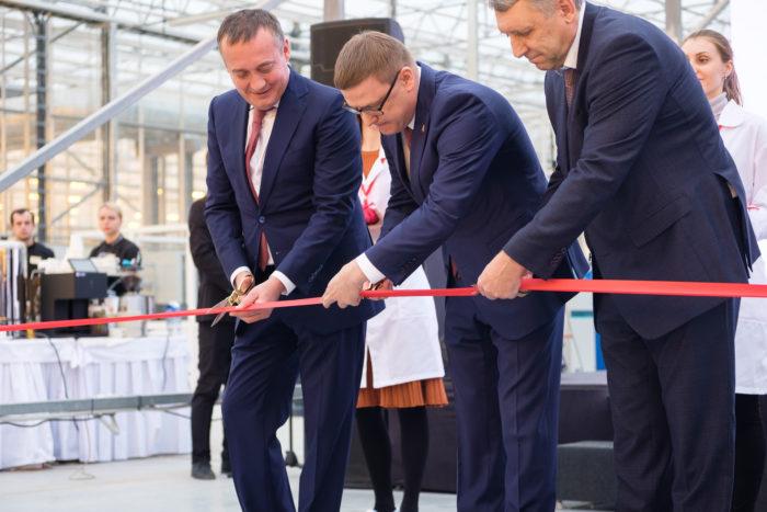 Агрохолдинг «Чурилово» открыл один из крупнейших тепличных комплексов