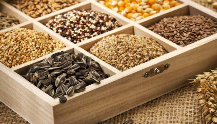 В Дагестане аграрии в достаточном количестве обеспечены семенами для посадки урожая 2020 года