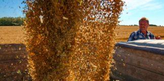 ВТБ решил продать долю в зерновом бизнесе
