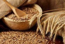 Доля продовольственной пшеницы в урожае 2019 года составляет более 80