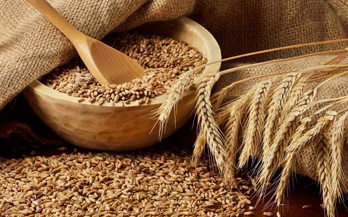 Photo of Доля продовольственной пшеницы в урожае 2019 года составляет более 80%