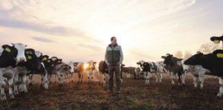 ФАС разрешила «ЭкоНиве» купить молочное хозяйство в Рязанской области