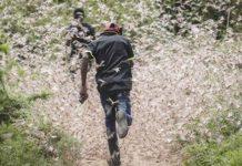 Саранча уничтожает в Кении кофе, а в Южном Судане уже начался голод