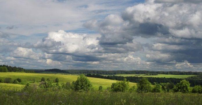 """""""Вологодский гектар"""" больше дальневосточного в 10 раз – и сразу в собственность"""