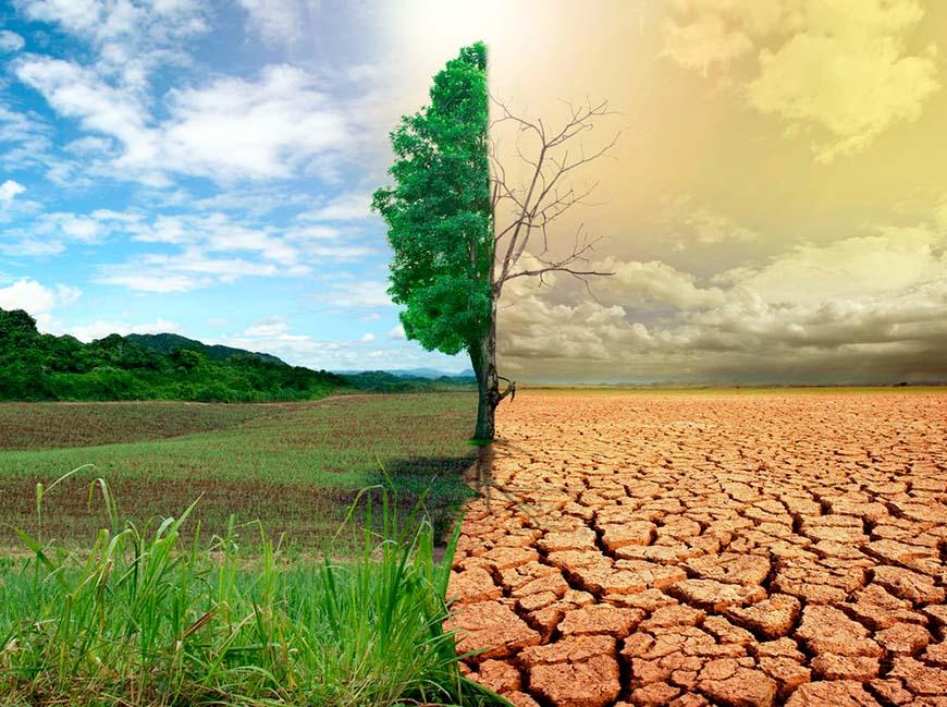 Что не так с традиционным сельским хозяйством