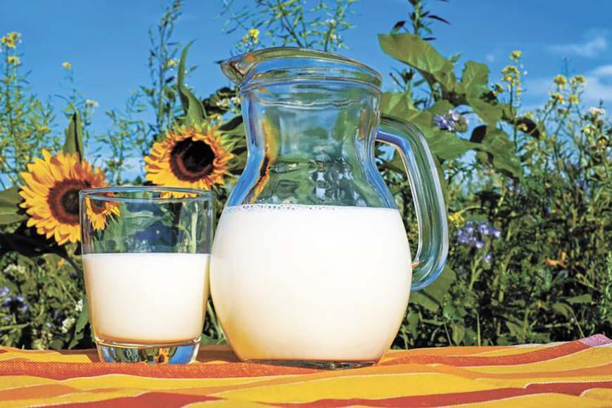 Молоко будут производить в три смены